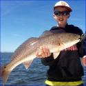 ian_redfish-800x800