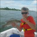 mangrove_snapper_1