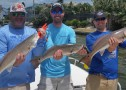 Anna Maria Island Fishing Report: Captain Aaron Lowman – April 22, 2016