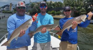 redfish trio