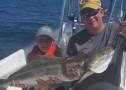 Anna Maria Island Fishing Report: Captain Aaron Lowman – June 10, 2016