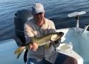 Anna Maria Island Fishing Report: Captain Wes Wildman – February 10 2019