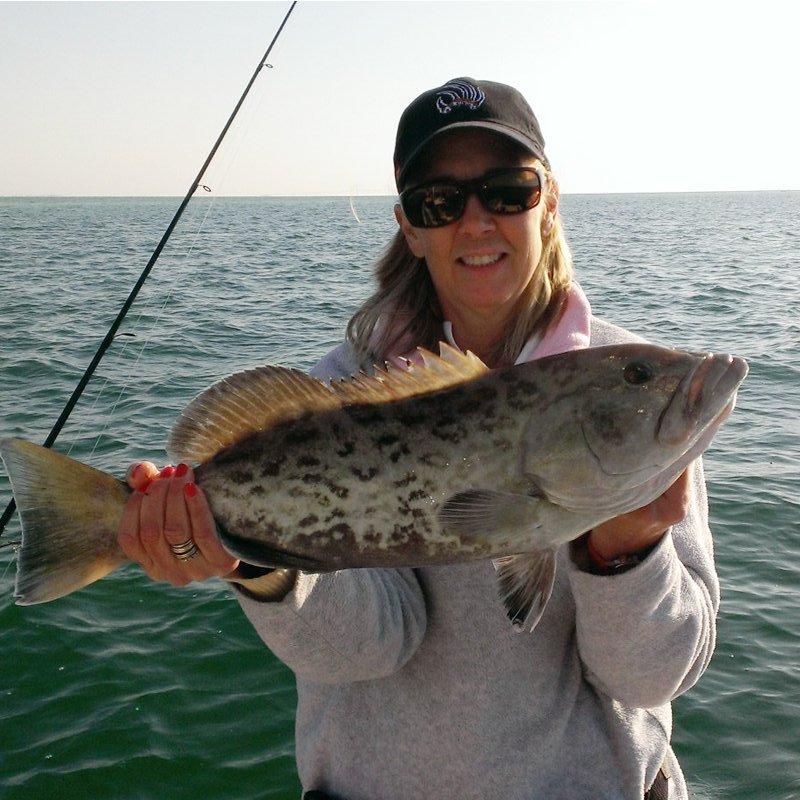 gag-grouper-04-01-2013