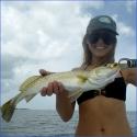 dani-trout