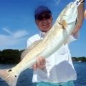 redfish-800x800-may-06-2013