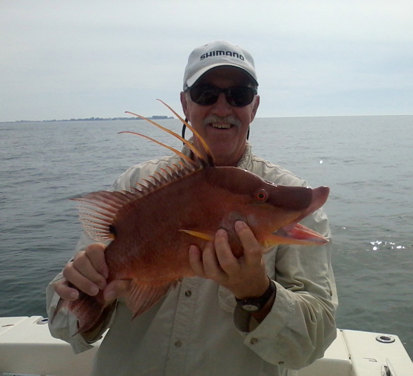 Captain Harrison King – Fishing Report – 02/10/13