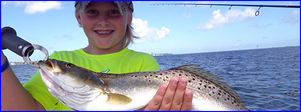 Anna Maria Island Fishing Report: Captain Aaron Lowman-08-12-2013