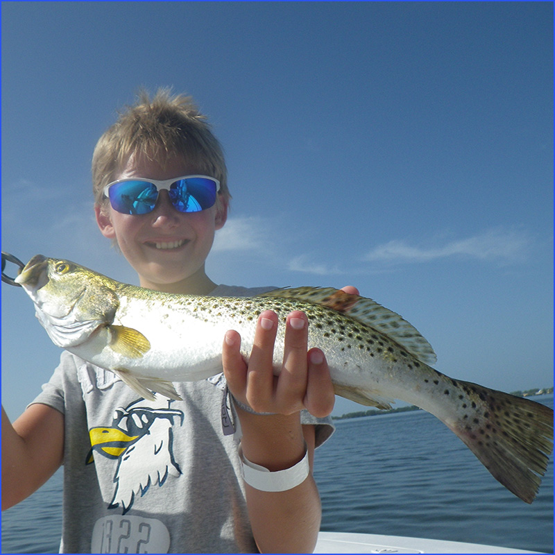 Anna Maria Island Fishing Report: Captain Aaron Lowman-09-09-2013