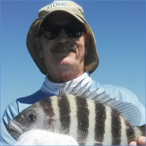 Fred Miller was catching big sheepshead on live shrimp.