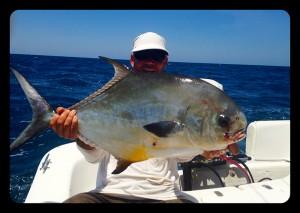 permit fish anna maria island