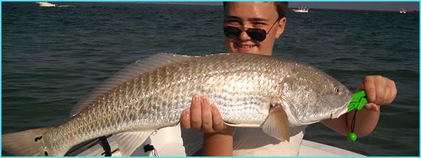 Anna Maria Island Fishing Report: Captain Aaron Lowman-08-27-14