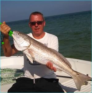 Redfish-2-800x800